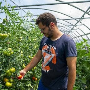 Gemüsegärtner/in EFZ