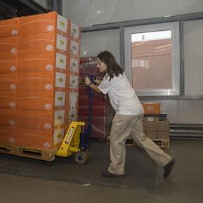 Einblicke in die Abteilung der Logistik