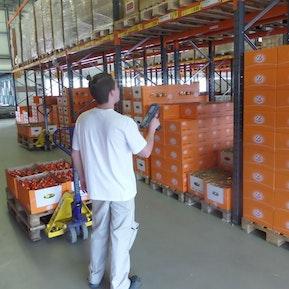 Lehre als Logistiker