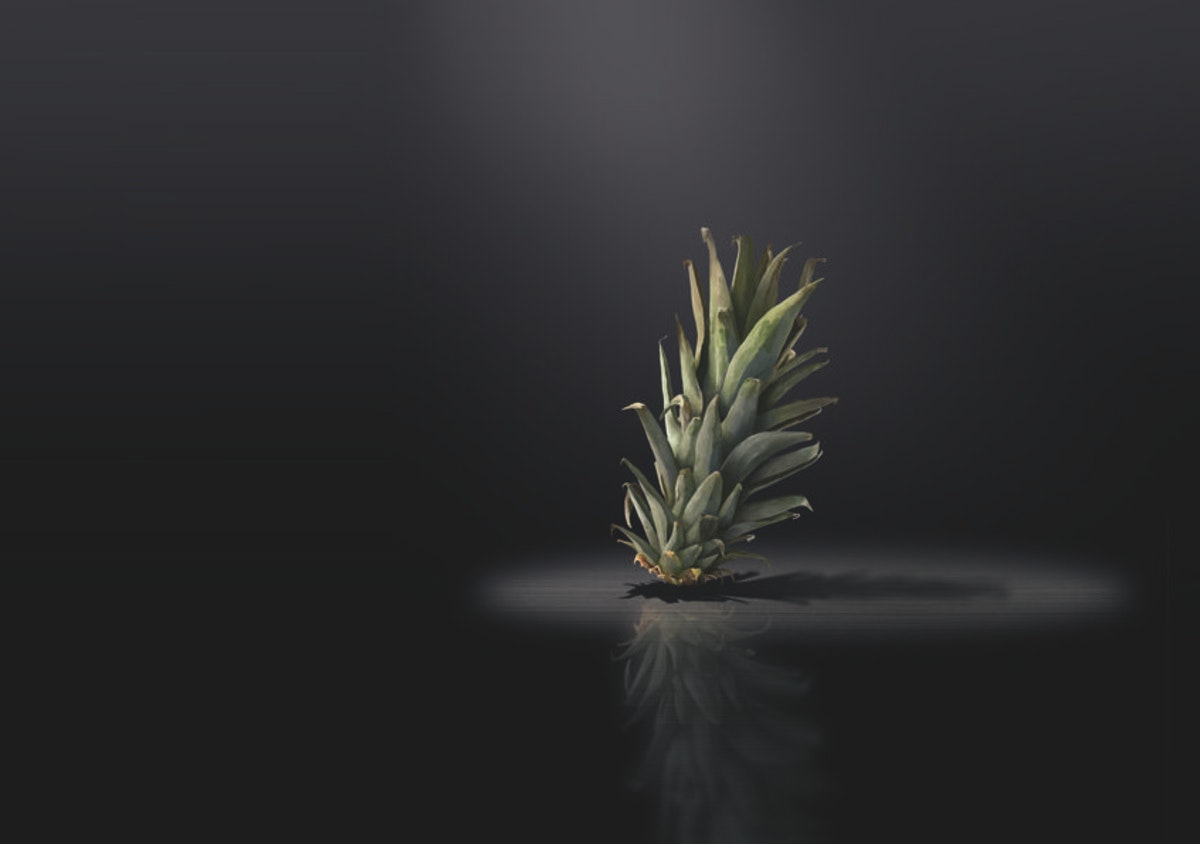 Photoshop: It's not the pineapple song ...